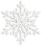 Vintage_Christmas_Palvinka_el (106).png