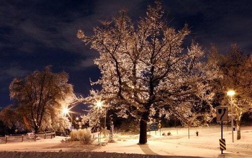 зима ночью
