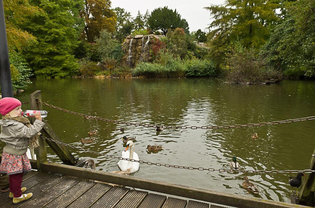 Водопад, лебеди и дети в ботаническом парке Palmengarten