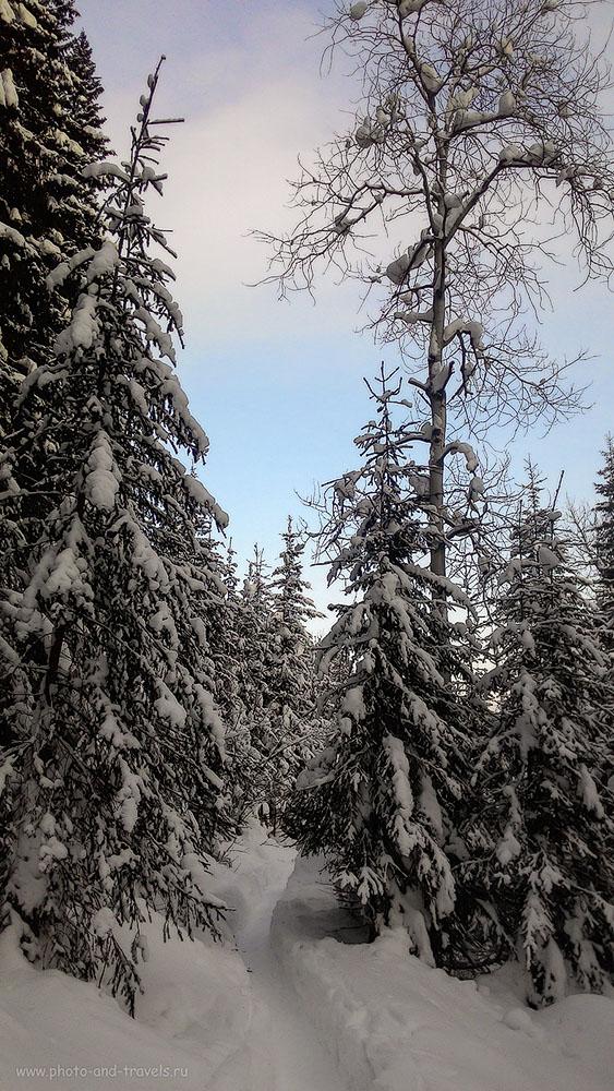 Фотография 2. Есть ли тропа к Усьвинским столбам в зимнее время? Снято на смартфон. Кстати, автор всех снимков в данном отчете, полученных на мобильный – моя Екатерина.