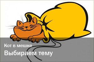 Кот в мешке | Выбираем тему