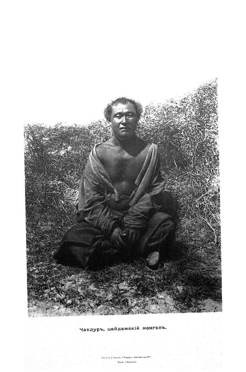 28. Чакдук, цайдамский монгол