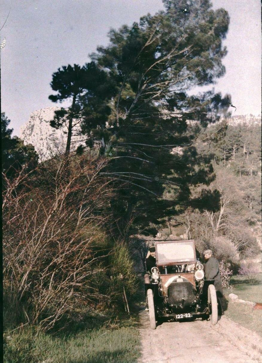 Автомобиль на лесной тропинке