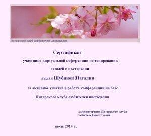 Сертификаты виртуальной конференции по тонированию 0_e7353_7e81deb_M