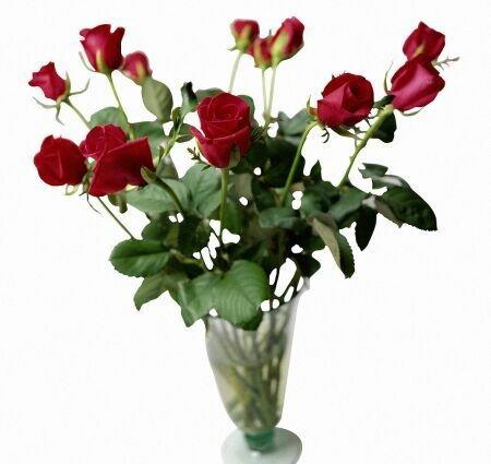 Букет роз в вазе открытка поздравление рисунок фото картинка