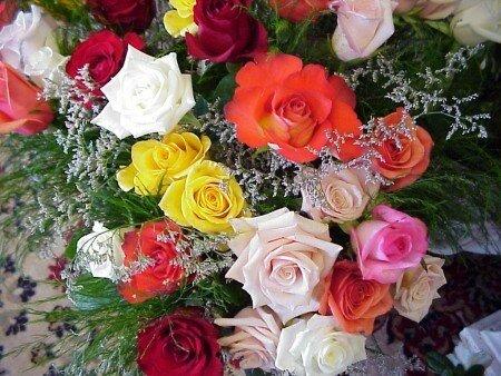 Разноцветные розы открытка поздравление картинка