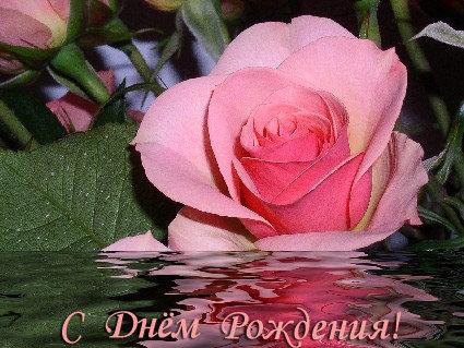 Троянда на воді листівка фото привітання малюнок картинка