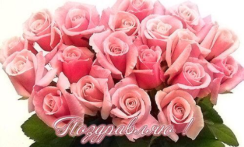 Розы розовые букет открытка поздравление картинка