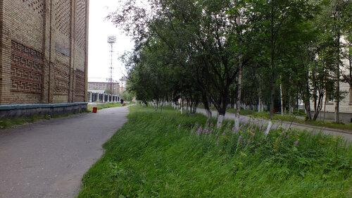Фотография Инты №5412  Лунина 7 (дворец спорта
