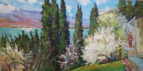 Макеева (Весна Черного моря)
