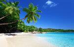 Beach (3).jpg