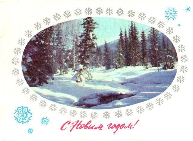 Зима, лес заснежен. С Новым годом!