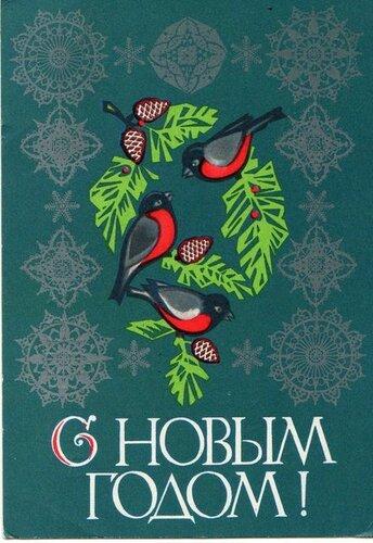 Радостные птицы. С Новым годом! открытка поздравление картинка