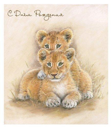 открытка с львятами день этого молодой