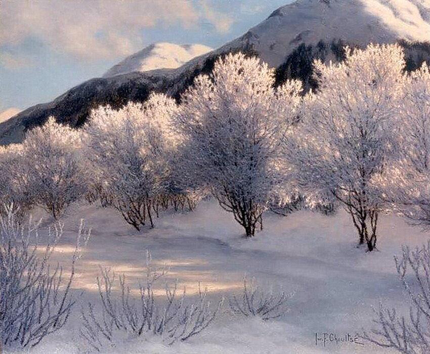 Зимой диснейленд фото