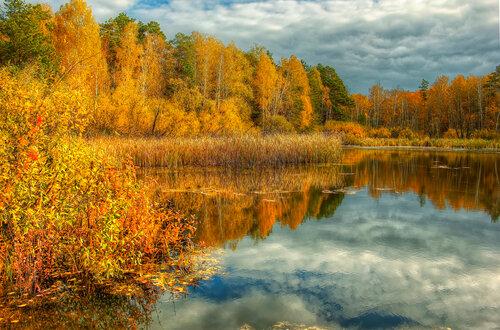 Золотая осень, которой не было