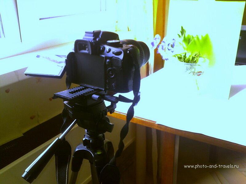 Фото 1. Студия для съемки макро в домашних условиях. На снимке: алюминиевый штатив ERSA, фотоаппарат Nikon D5100 KIT 18-55 VR с макрофильтром