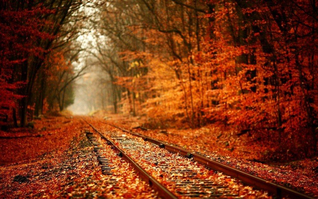 Осень ты прекрасна обсуждение на