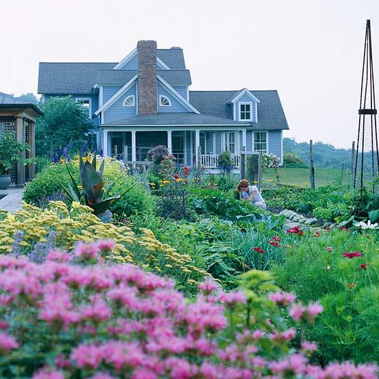 Ландшафт - Идеи оформления переднего дворика дома-Сад камней