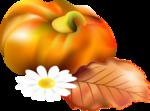 Осень65