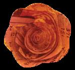 NTD_TSL_Paper_Flower.png