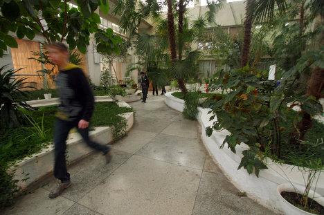 Зимний сад иего посетители