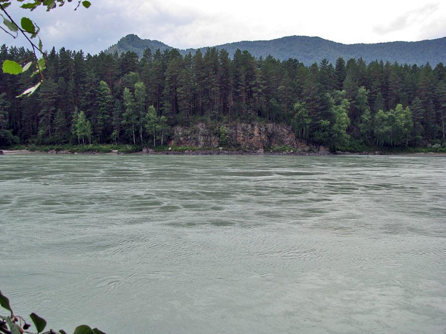 Красивые места горного алтая катунь