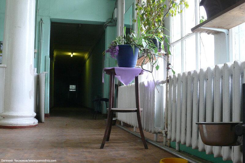 01. ВДНХ. Зеленый театр. 04.06.14.099..jpg
