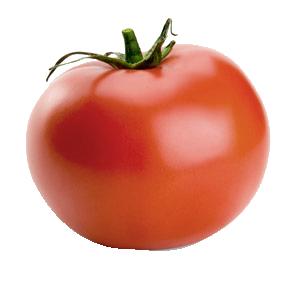 bren_littlegarden_ep_tomato.png
