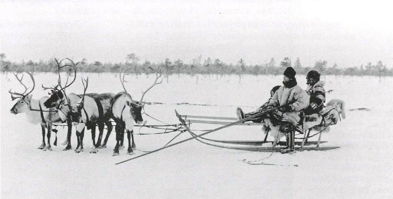 Езда на оленях в Мезенском уезде.1894