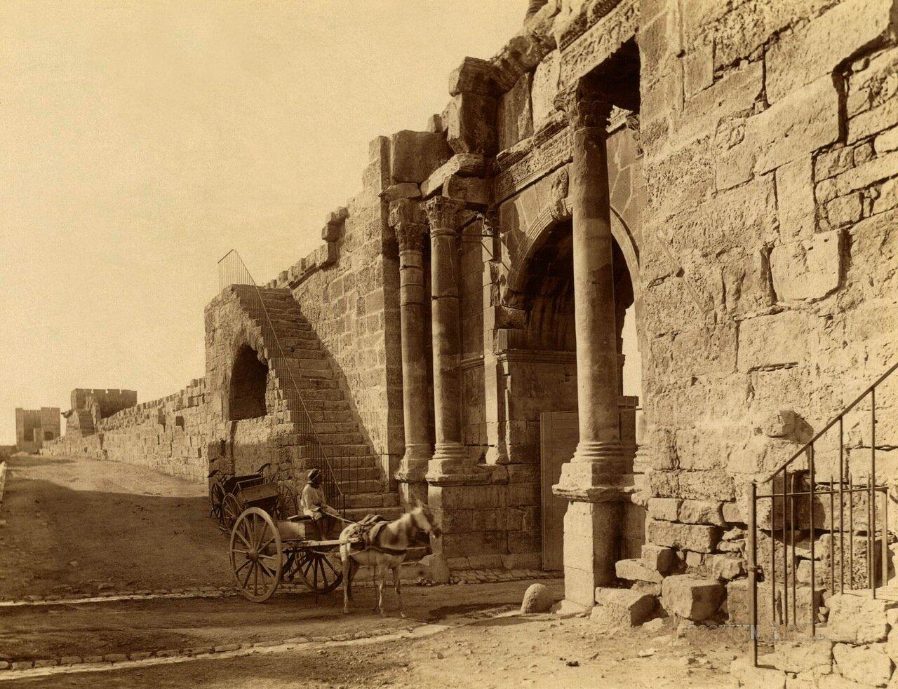 1860-1890. Алжир. Человек в повозке
