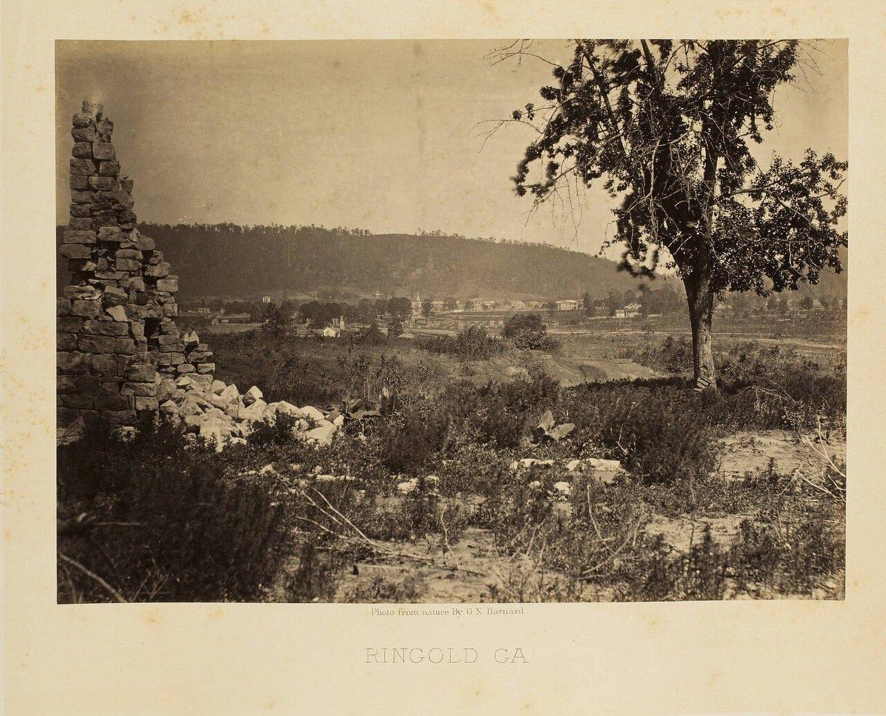 Рингголд