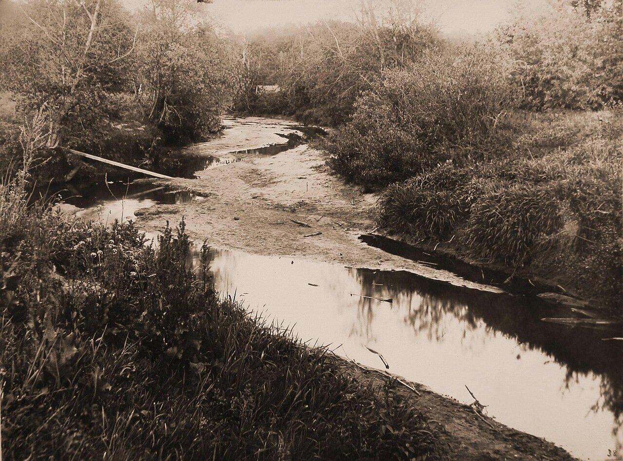 Вид на реку Каменка с одного из берегов