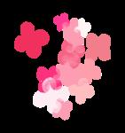 Palvinka_FlowerEssence_flowers5.png