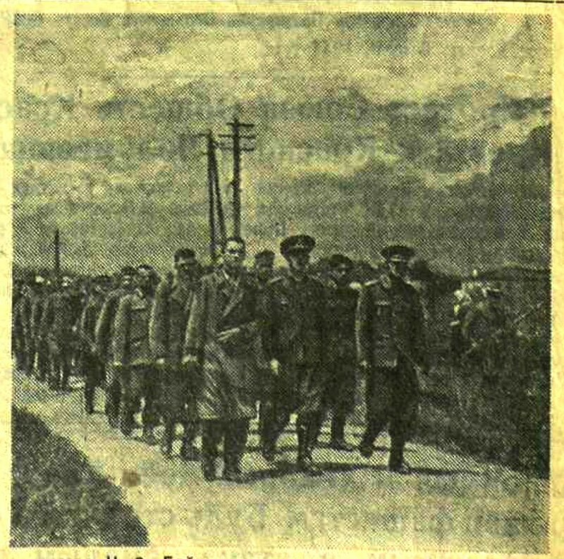 «Красная звезда», 8 июля 1941 года, пленные немцы, военнопленные, пленные румыны