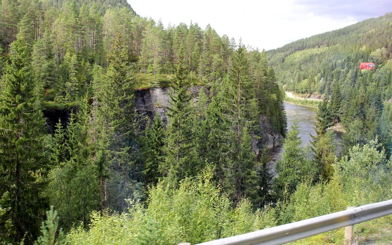 Gaula rever valley (Gauldalen)