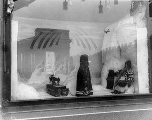 Реклама-выставка на окнах конторы.