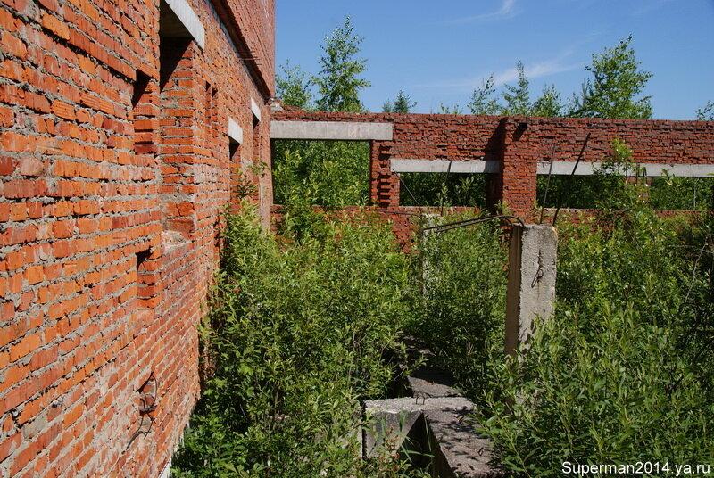 Заброшенны профилакторий в Ликино-Дулёво