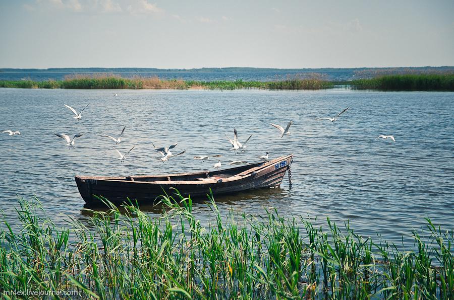Браслав, Браславские озера, Дривяты, Браславщина