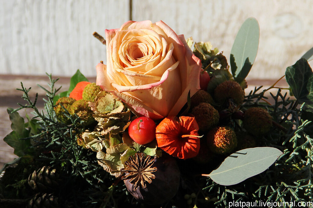Золотая Осень Бад Мюнстерайфеля...