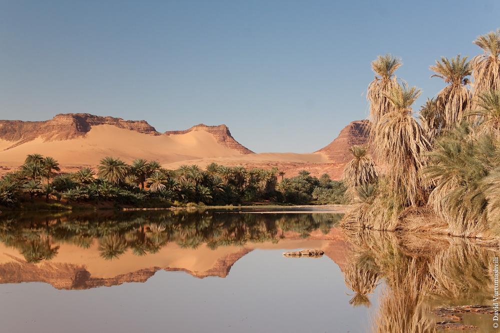 Чад, в оазисах Cахары
