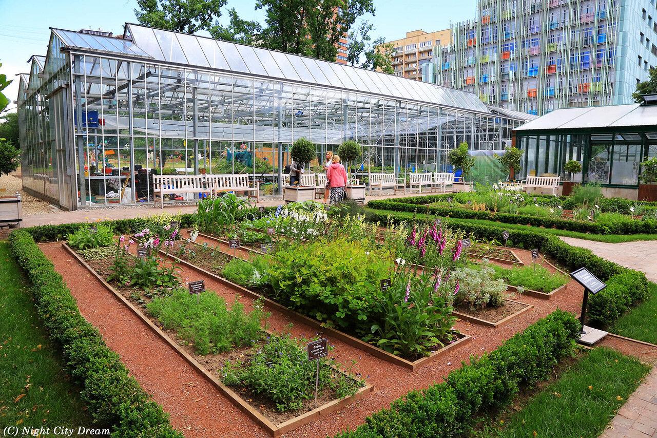 Ботанический сад московского государственного университета им мв ломоносова