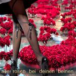 Alle Rosen bei deinen Beinen