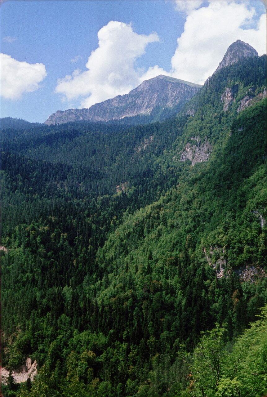 Абхазия. По дороге на озеро Рица. Ацетук