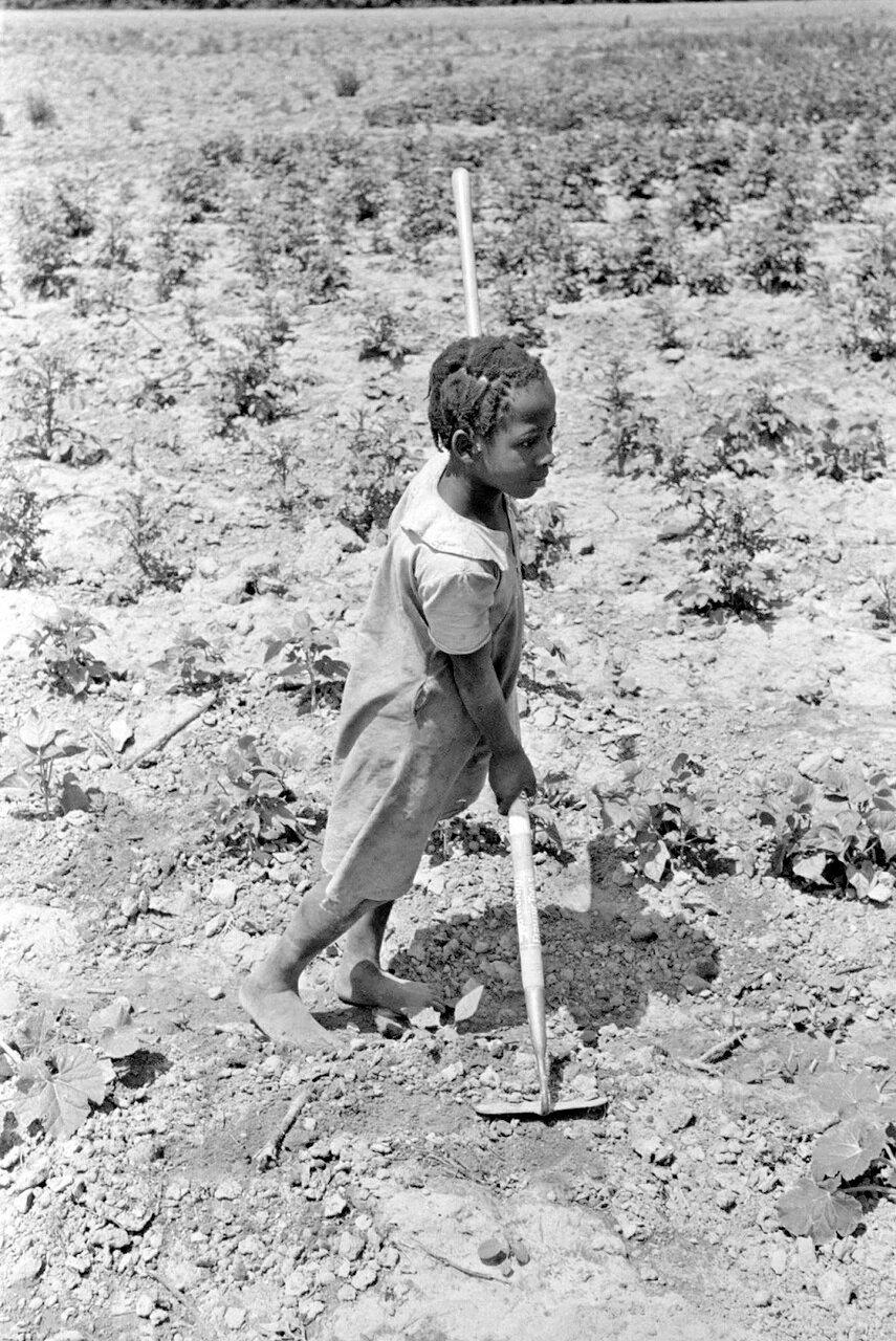 Ферма в юго-восточной части Миссури. Дочь испольщика на поле с мотыгой, 1938.