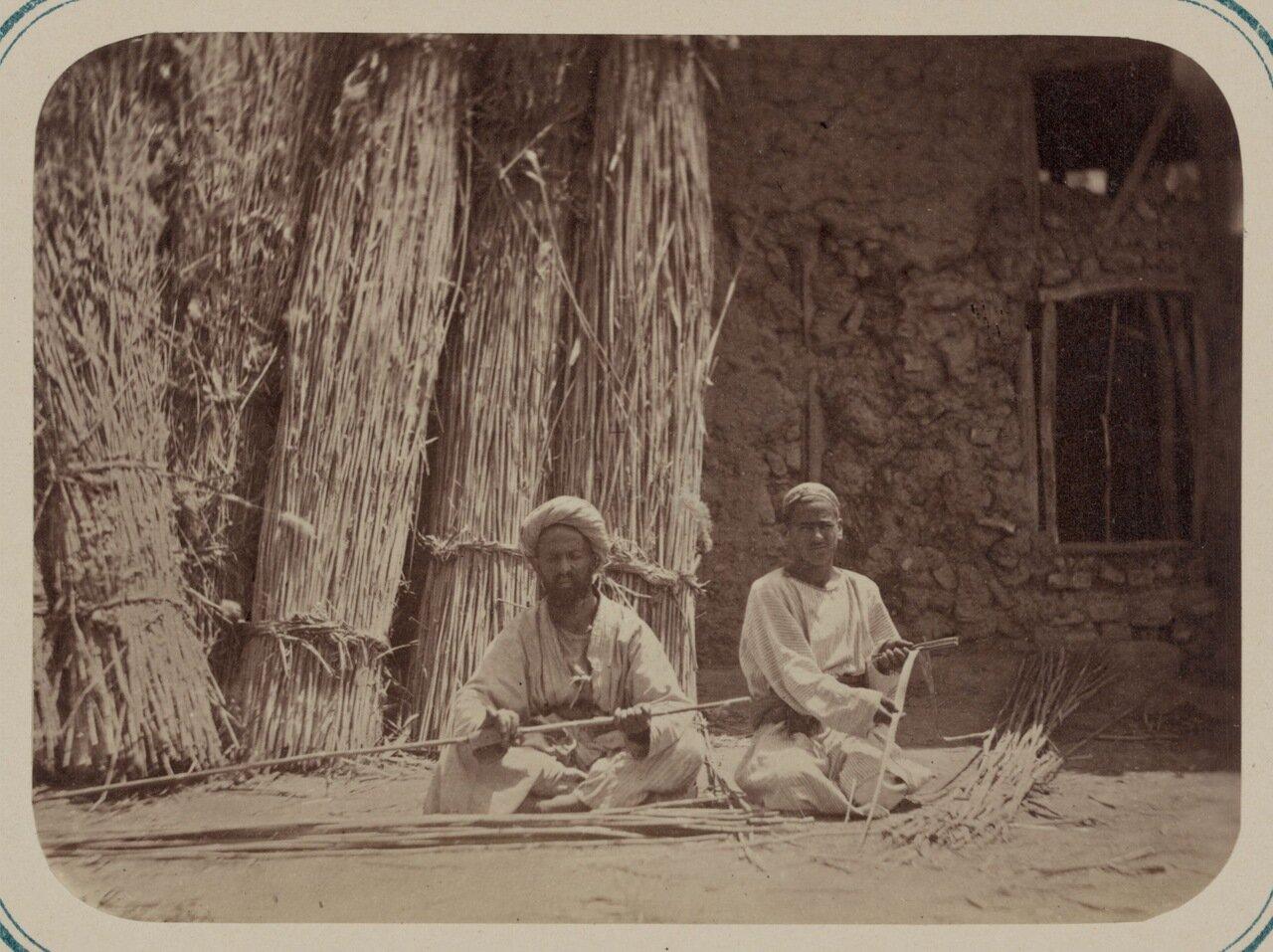 Камышовое производство.  Очистка камыша для плетения