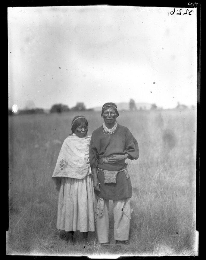 1895. Супружеская пара из племени Уичоли