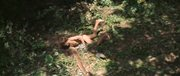 http//img-fotki.yandex.ru/get/9322/253130298.2aa/0_13966b_44d8015a_orig.jpg
