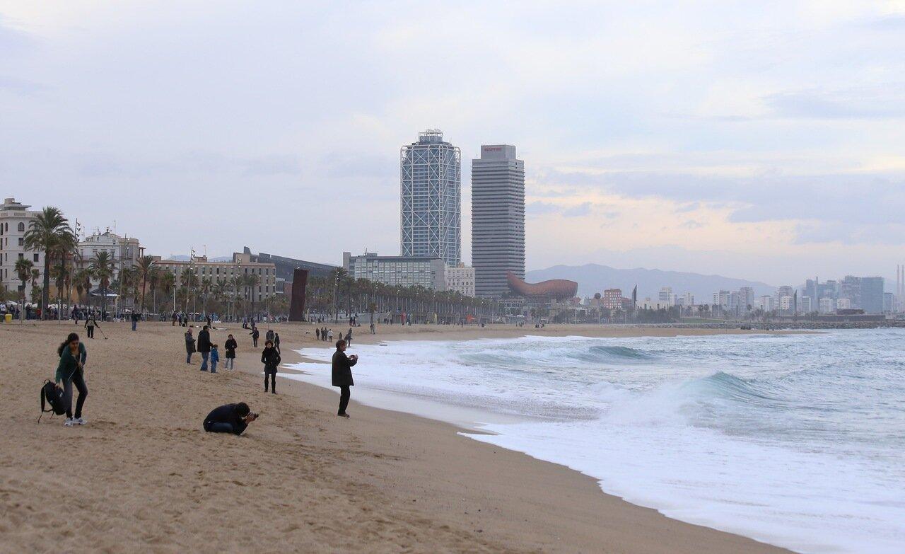 Barcelona.Of Barceloneta. The Beach Of San Sebastian. Platja de Sant Sebastià.