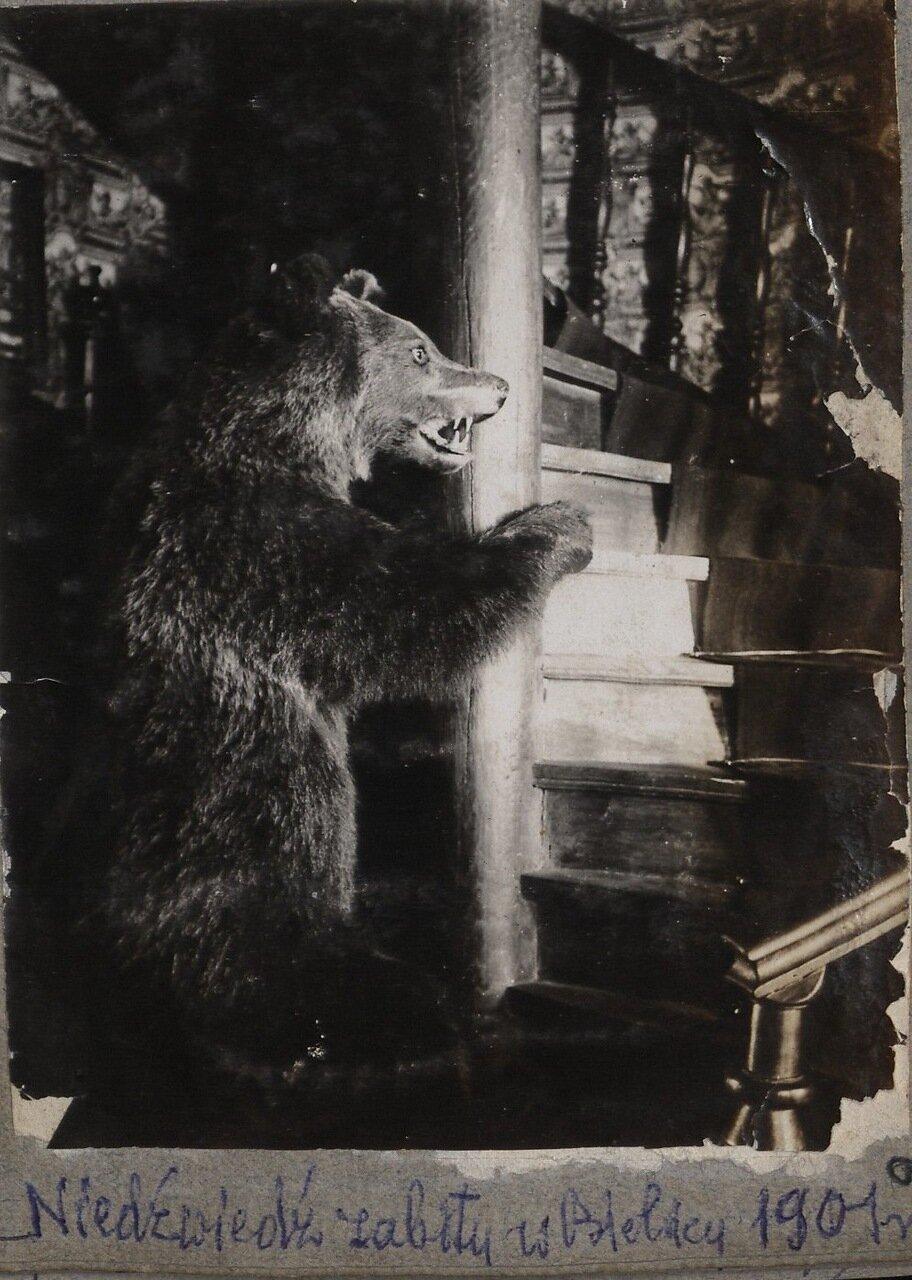Интерьеры дворца. 1901